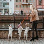 hejger_wizerunkowa_from_wild_story_43