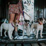 2020_07_22_lifestyle_wizerunkowa_PRT_stocznia_60